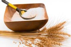 blé de texture Photographie stock