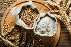 Blé et farine photographie stock libre de droits