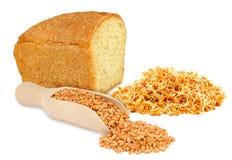 Blé et germe de blé Photographie stock