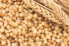 Blé et oreille cuits de blé Photo libre de droits
