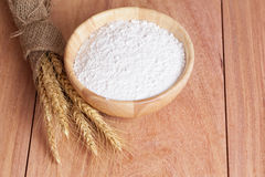 Blé, farine de blé Photo libre de droits