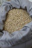 Blé Grains organiques de blé dans un sac Foyer sélectif Photographie stock libre de droits