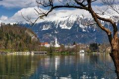 Blödd Lake, Slovenien Arkivbilder