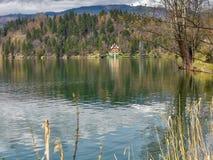Blödd Lake, Slovenien Royaltyfri Foto