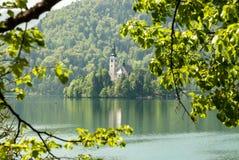 Blödd Lake, Slovenien Fotografering för Bildbyråer
