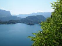Blödd Lake, Slovenien Arkivbild