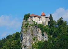Blödd medeltida slott Arkivbild