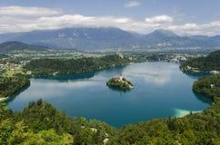 Blödd sjö, Slovenien Royaltyfri Bild