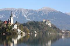 Blödd sjö, Slovenien Fotografering för Bildbyråer