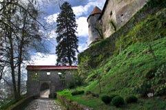 Blödd sjö - Slovenien Royaltyfri Bild