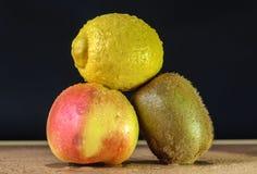 Grupp av frukt Royaltyfria Foton