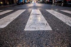 Blöta asfaltcloseupen av den vita fot- övergångsstället i en stad royaltyfri foto