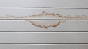 Blöta fläck på den vita väggen Royaltyfri Fotografi