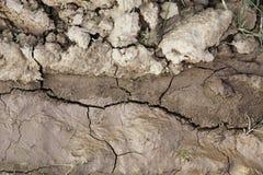 Blöta jord med gyttja Royaltyfria Foton