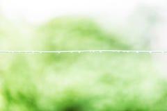 Blöta kabel med grön bakgrund arkivfoto