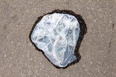 Blöta och smutsa ner plastpåsen Fotografering för Bildbyråer
