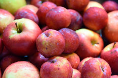 Blöta röda äpplen Arkivbild