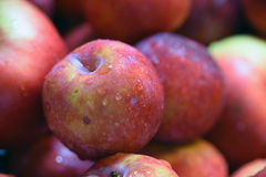 Blöta röda äpplen Arkivbilder