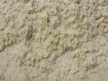 Blöta sand på banken av floden Lerig jord efter regn fördärvar planet Royaltyfri Fotografi