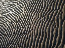 Blöta sand på stranden Royaltyfri Fotografi