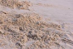Blöta sandblackground Arkivfoto