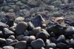 Blöta stenar på kusten Arkivfoton