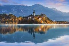 Blött i Slovenien, Europa arkivfoto