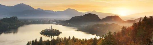 Blött i Slovenien, Europa royaltyfri foto