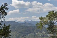 Blött med Triglav bergskedja i Slovenien Arkivfoton