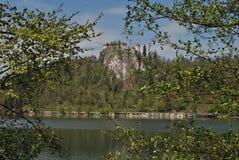 Blött slott Royaltyfri Bild