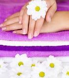 Blühen Sie auf Frauenhand Lizenzfreies Stockfoto
