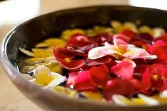 Blühen Sie Blumenblätter in einer Schüssel an einem Badekurort Lizenzfreie Stockbilder
