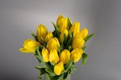 Blühen Sie Blumenstrauß von den gelben Tulpen im Vase, der auf grauem backg lokalisiert wird Stockfotos