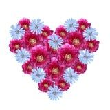 Blühen Sie das Herz, das von den Ausschnittpfingstrosen- und -maisblumen gemacht wird Stockbilder