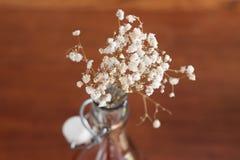 Blühen Sie Dekoration Stockfoto