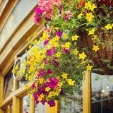 Blühen Sie Dekoration in der englischen Kneipe auf Straße von London, Großbritannien Stockfotografie