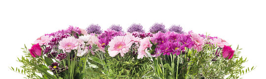Blühen Sie Fahne mit dem rosa Blumenbeet von Gerberas, lokalisiert Lizenzfreie Stockfotografie