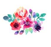 Blühen Sie Grenze Stockfoto