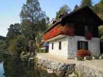 Blühen Sie Haus in MreÅ-¾ nica Fluss Kroatien Stockbild