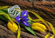 Blühen Sie Iris und Tulpen mit Wassertropfen auf hölzernem Hintergrund Lizenzfreies Stockfoto