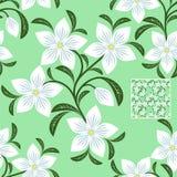 Blühen Sie nahtloses Muster mit weißen Blumen auf Grün Lizenzfreies Stockfoto