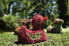 Blühen Sie Statuenente auf der Mainau Insel/dem Deutschland Lizenzfreies Stockfoto