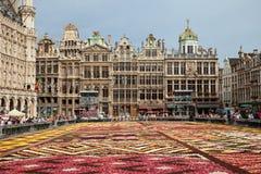 Blühen Sie Teppich-Festival von Belgien in Grand Place von Brüssel mit seinen historischen Gebäuden Lizenzfreie Stockfotos