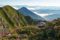 Blühen von Bergen an der Nebeldämmerung lizenzfreie stockfotografie