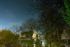 Blühende Bäume im Abendhimmel Lizenzfreie Stockfotografie