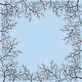Blühende Bäume und blauer Himmel Lizenzfreies Stockfoto
