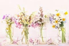 Blühende Blumen Frühlingsblühens/-Frühjahres auf rosa Pastellhintergrund lizenzfreie stockbilder