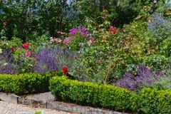 blühende Blumen am Häuschengarten stockbild