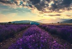 Blühende duftende Felder der Lavendelblume in den endlosen Reihen Weinlesebuspackwagen Stockbild