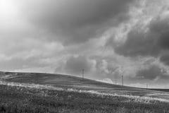 Blühende Felder von Sizilien Stockbild